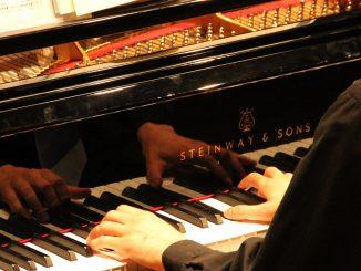 Les mains agiles de Mike Galib lors du concert